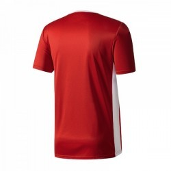 Koszulka Adidas JR Entrada 18 038