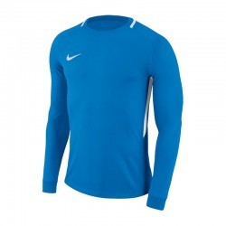 Nike Bluza Bramkarska Dry Park III 406